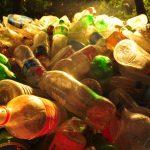 マイクロプラスチックの問題